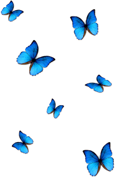 butterfly butterflies blue fly flying shine wings stickers light blueaesthetic aesthetics butterflywings new nature insect beautiful aesthetic sparkle overlay galaxy frame heart lovers emoji freetoedit