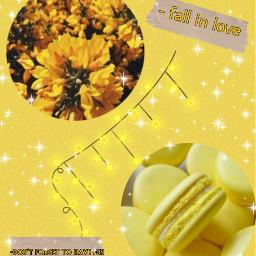 freetoedit yellow yellowaesthetic yellowaestheticbackground lightyellow