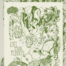 eatmoreplants