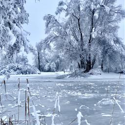 freetoedit winterscenes colddays switzerland