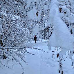 freetoedit snow