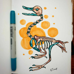 duck skeleton stylised graphicdesign design animal creature animalanatomy inkwork drawing art artist tradionalart tradionaldrawing copic copicmarkerau copicmarkers copicsketch colours colour freetoedit