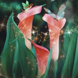 freetoedit fairy editoftheday magic nature butterfly garden