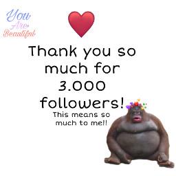 3k 3000followers 3000 followers thankyou thankyousomuch happy loveyou loveyouguys freetoedit