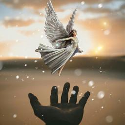 freetoedit wings
