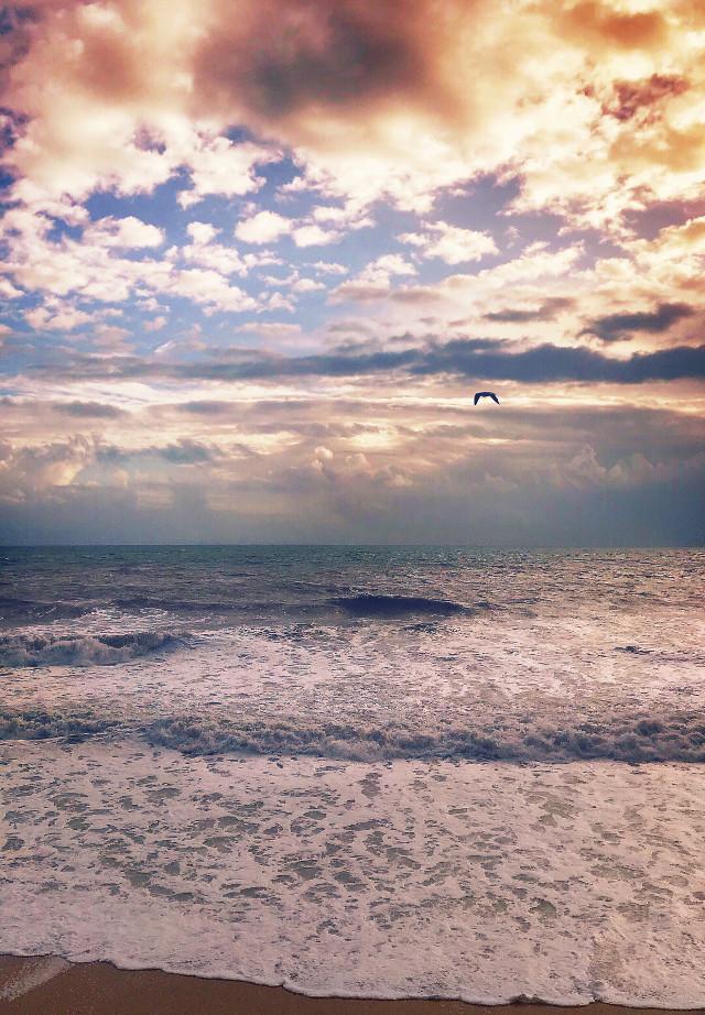 #pcnaturethroughmyeyes #nature #seaview #wintertime #waves #seawaves #wavesspreding on #sand #seafoam #roughsea #winterbeach #horizon #birdinflight #seagull #windyweather #cloudysky #endoftheday #sunsettime #sunsetcolors #beautifulscenery #naturesbeauty #highangleshot #beachphotography                                                                                       #freetoedit
