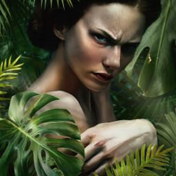 jungle tropical