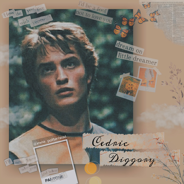 Cedric Diggory aesthetic  . Taglist(🔫 to join) @aafiaaltaf54  @dancer25_  @dracox0828  . #cedricdiggory #harrypotter