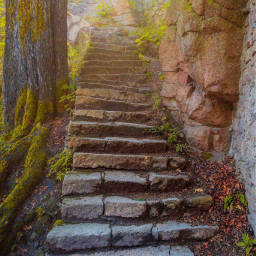 freetoedit stairs ruins myphoto nature