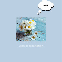freetoedit thankyou aesthetic beautiful daisy