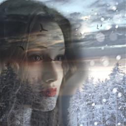snow winter pinetree transparent girl freetoedit