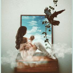 girl mirror bird surreal room cloud freetoedit ircmirrormirror mirrormirror