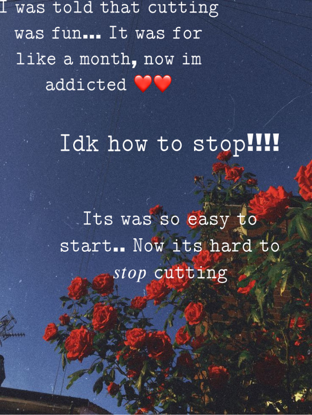 Haha #c&cing @idiot_kio thats what i meant :))