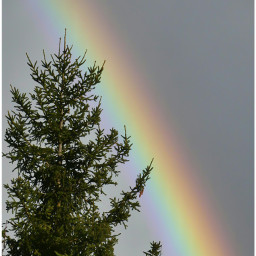 rainbow panasoniclumix sky naturephotography