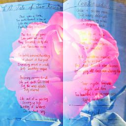 poem twinroses poetry