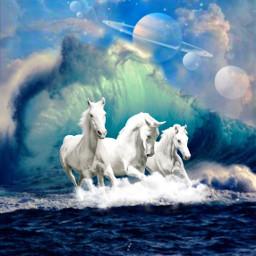 freetoedit horses fantasyart
