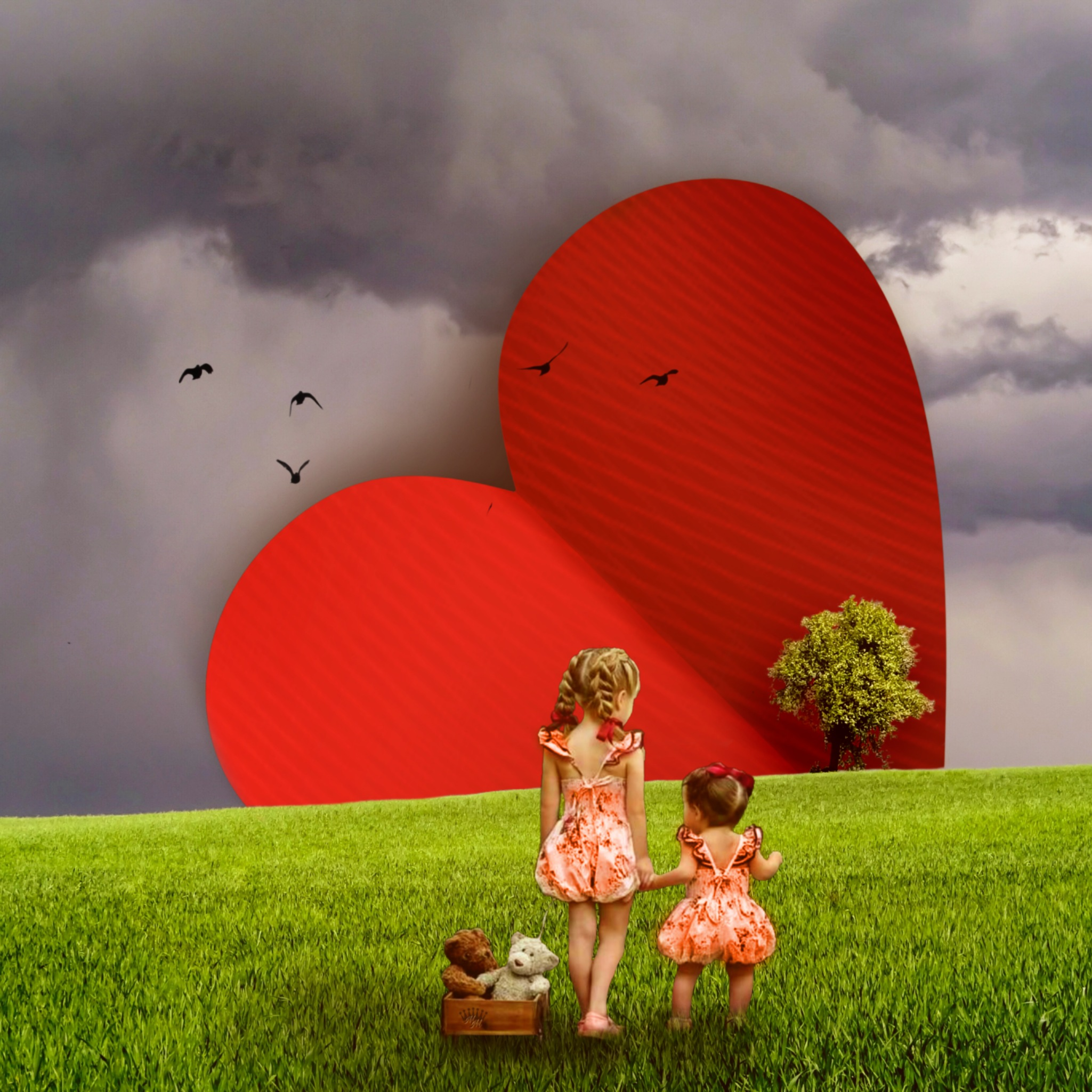 Original photography is from the #mastershoutout gallery of photographer @maciejgrzegorz125 #heart #love #surreal #heart #giantheart #children #babies #fre