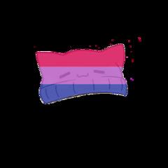 bisexual beanie lgbtq freetoedit