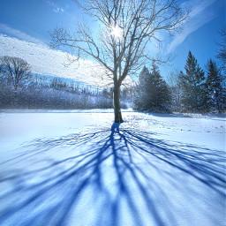 freetoedit remixit nature landscapephotography beauty pretty landscape sunrise tree peaceful follow followme followforfollow followmeplease fanart snow winter shadows