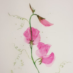 aquarell selfmade mein