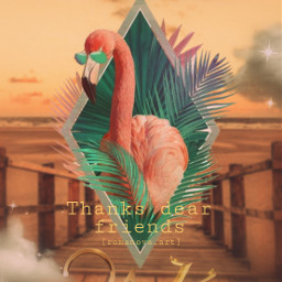 21k myedit freetoedit flamingo picsart sun