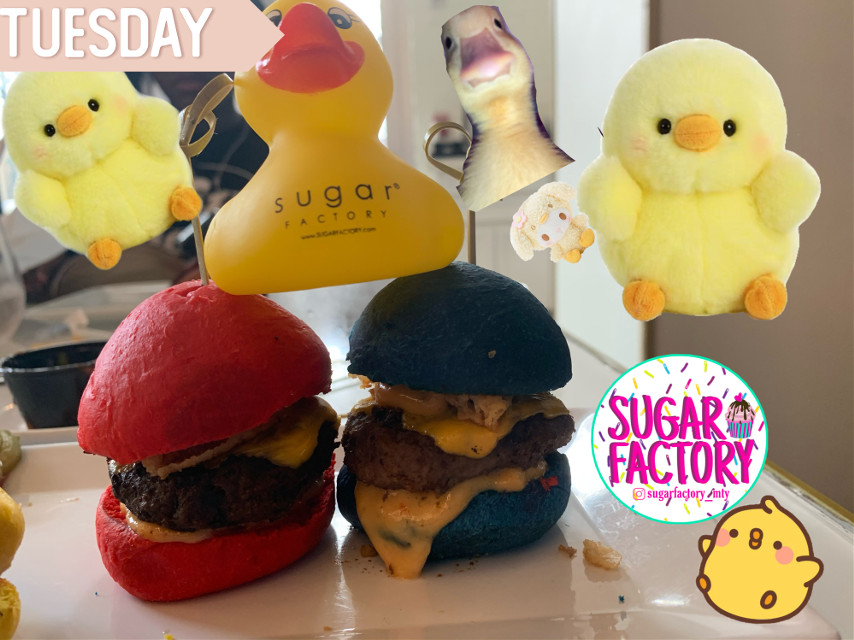 We went to sugar factory! #duckys