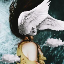 freetoedit wings clouds