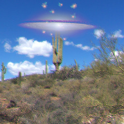 fly nature surreal cactus bluesky freetoedit
