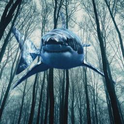 picsart madewithpicsart surreal shark tree water forest blue dark freetoedit