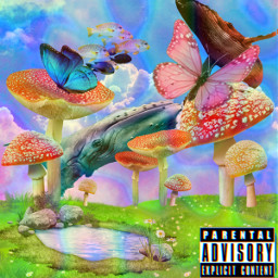 albumcover trip trippy butterfly whale mushroom freetoedit