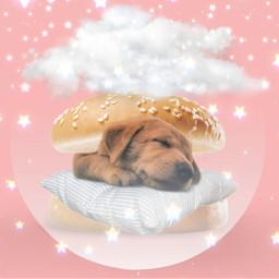 dog sleepypuppy puppy sleepydog sleep cloudsandstars clouds stars starsbackground starsky fanartofkai pcbeautifulbirthmarks tattooday echumananimalhybrid taemin holographic arianator kai wattpadcover king mspedit arianagrande junghoseok fanart melaniemartinez freetoedit ircfilltheburger filltheburger