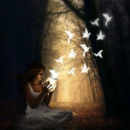 girl light birds forest dark freetoedit srcpapercranes papercranes