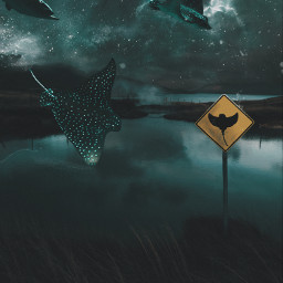 biganimals flyinganimals galaxy spaceart animals surreal surrealism fantasy stingray ray freetoedit