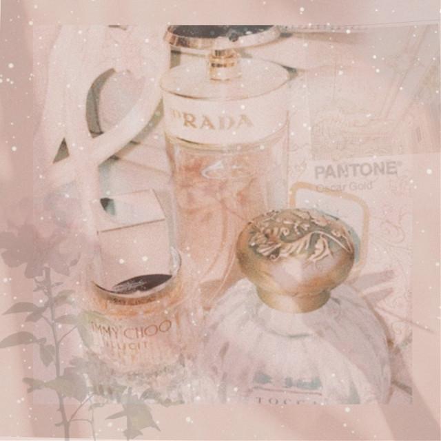 #prada#jimmychoo#chanel#gucci#rich@pantone#rose#aesthetic#AES