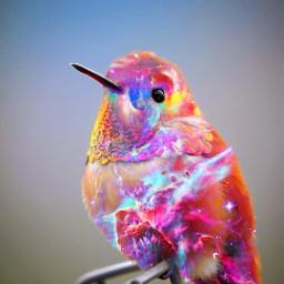 birds galaxy cosmicbrilliance cosmic freetoedit