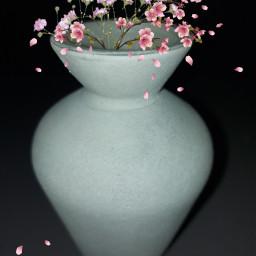 photography myphoto editedbyme vase freetoedit