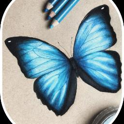freetoedit butterfly blue art