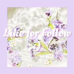 likeforfollow followforfollow like4follow like4follower likeforfollowers likeforfollowback follow4follow