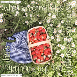 freetoedit stophatingg bekind quote green blue strawberry strawberries