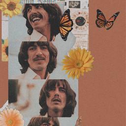 music georgeharrison thebeatles brownaesthetic yellowaesthetic flowers butterflies paper herecomesthesun happybirthday freetoedit
