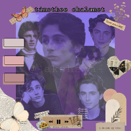 timotheechalamet liltimmytim edit celebrity vintage purple aesthetic freetoedit