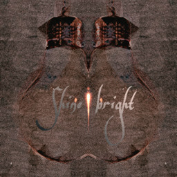 shine lightbulb globe irclightbulb freetoedit