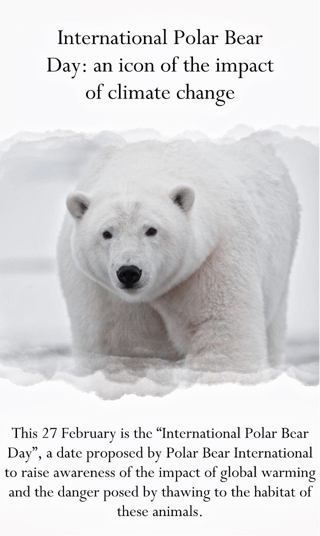 Today is the international polar bear day: this is a day to make an awareness of the impact of climate change. Is a day to make a change, we can make a change together. Please save our planet.  ꒰🌎ミ𝐓𝐀𝐆 𝐋𝐈𝐒𝐓 ꒰🌍ミ @doggirlinthecity   @charlieharpham @pixartqueen07   @cxsmicluv-   @coffee-jclly  @jadez_edits   @her0ber0   @amythtst   @addiegrace5   @adietay   @axthetic_edits   @secret_me_13   @ruelfqn   @sugarcookiesss   @peachyy_gloss  @vkaul   @savanahhhh34   @bby_singlebxtch  @volente926   @aditings   @mrs_tom_holland   @finns_wolfhxrds   @charlottebarbara   @glossierlexa   @treegirl18  @cotton-cqndy  @_rihanna_diamonds_  @aesreplays   @peachydarling  @its_kara  @_izzyeditz  @iamshahrzad_d  @advice_celebedits @artist510  @eternal_bliss  @py10love55  @_stickermaker_  @ts_luver  @offthebeat_25  @chatty_celebrities  @jo_truly_31 @saloom-art @scarlet_spellmqn-23 @rubyzzzzz @juliateaz @artist510 @-vqnillanichez @gucciqzx @sunset_daisy @_7acostanza @glossierlexa @cosmicpoems @smoyermisha @earthhero @hisloveneverfails- @helplxss- @for-the-planet @queer_girl 𝙲𝚘𝚖𝚖𝚎𝚗𝚝 🌎 𝚝𝚘 𝚋𝚎 𝚊𝚍𝚍𝚎𝚍. 𝙲𝚘𝚖𝚖𝚎𝚗𝚝 ✨ 𝚒𝚏 𝚢𝚘𝚞 𝚌𝚑𝚊𝚗𝚐𝚎 𝚢𝚘𝚞𝚛 𝚞𝚜𝚎𝚛𝚗𝚊𝚖𝚎. 𝙲𝚘𝚖𝚖𝚎𝚗𝚝 ☁️ 𝚝𝚘 𝚋𝚎 𝚛𝚎𝚖𝚘𝚟𝚎𝚍. #interesting #polarbears #artic #savetheoceans #savetheearth #savetheplanet #savethepolarbears #savetheglaciers #nature #earth #planet #saveourplanet #ourplanet #help #fyp #photography #snow #news