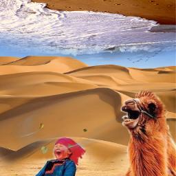 pukalani maui2021 blending kids animals petsandanimals wind upsidedownworld freetoedit beachday