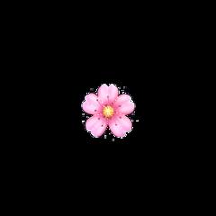 flower emoji sparkle pink cute iphoneemoji iphone iphonesticker iphonestickers sweet aesthetic edit aestheticedit yellow white heart crown freetoedit
