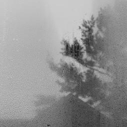 winter morning blackandwhite minimal window