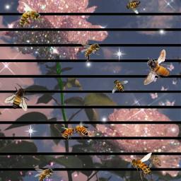 bees flowers moonlight freetoedit