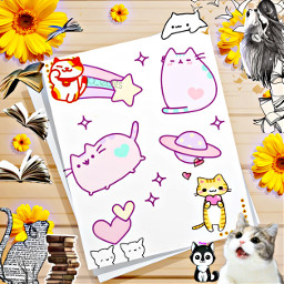 fondodepantalla libretaprersonalizada decoracion libros gatos jirasoles lobos diseño freetoedit