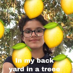 treeee freetoedit