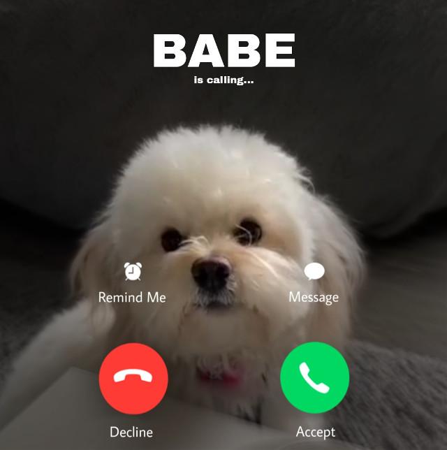 ##cute